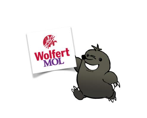 Wolfert Lansing mentorbegeleiding