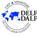 Delf Dalf v2